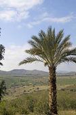 Primavera na Galiléia hills.israel. — Fotografia Stock