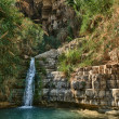 Stock Photo: Ein Gedi Nature Reserve off coast of Dead Sea