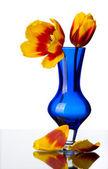 Kwiaty tulipan w niebieskie szkło wazon, na białym tle. — Zdjęcie stockowe