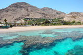 Red sea coast and coral reef — Stock Photo