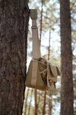 Shoulder bag hanging on pine tree — Stock Photo