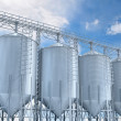 Agricultural elevator building for corn storage — Foto Stock