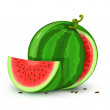 Vector water melon fruit isolated on white - Stock Vector