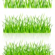 Stock Vector: Dense green grass