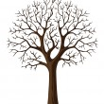 vektorové siluetu cron větve stromu — Stock vektor