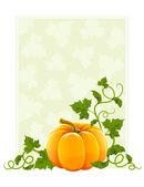 Ripe orange pumpkin vegetable with green leaves — Stock Vector