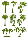 Set of palm tree silhouettes — Stockvektor
