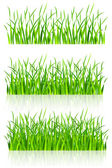 Dense green grass — Stock Vector