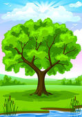 Summer landscape with old tree and sky vector illustration — Stock Vector