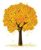 Vector silhouette of autumn season yellow tree — Stock Vector