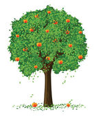 Vector silhouette of apple tree with fruits — Stock Vector