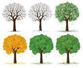 Vektor silhuett av säsongsbetonade träd — Stockvektor