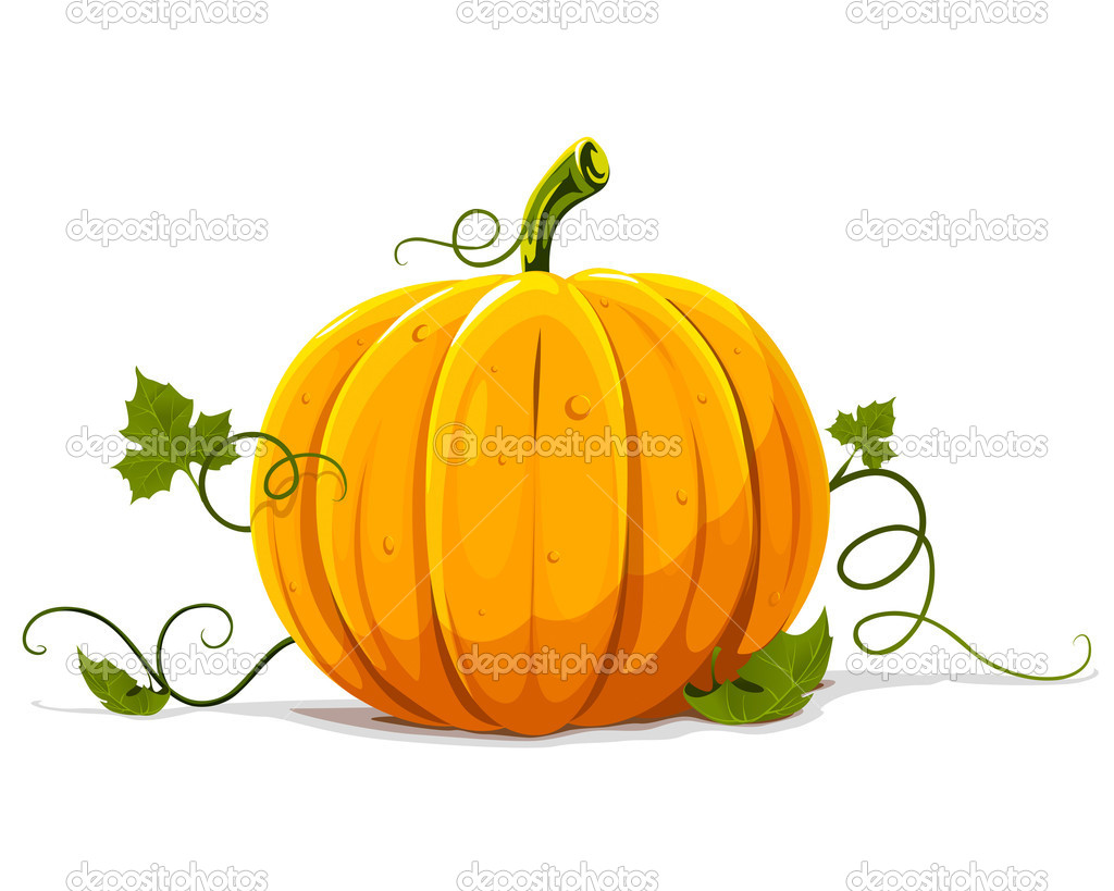 Vector pumpkin vegetable fruit isolated on white background — Vettoriali Stock  #5782349