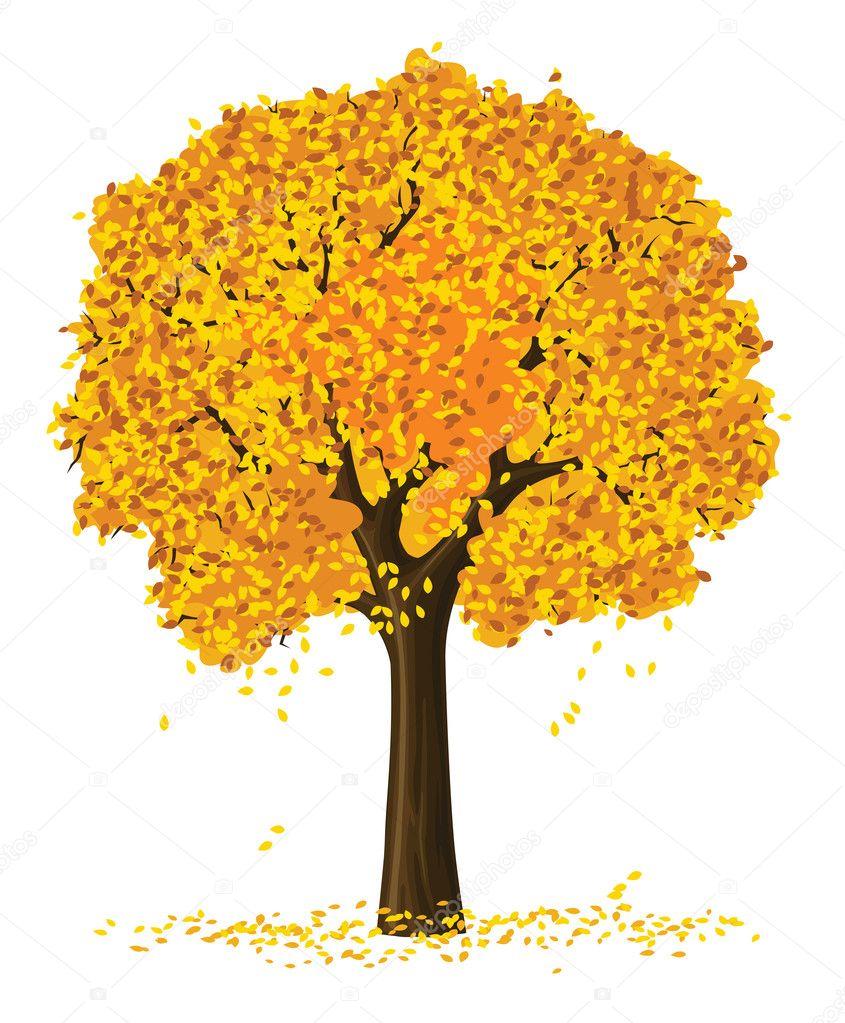Arboles Secos Vectores Silueta Vector Del árbol de la