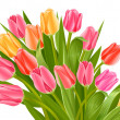 Bouquet of tulip flowers — Stockvectorbeeld