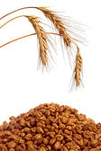 Cereal flakes and wheat — Stock Photo