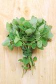 Marjoram leaves — Stock Photo