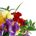 Bouquet of freesias — Stock Photo