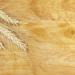 Stock Photo: Wheat stems