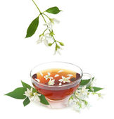 Jasmijn thee — Stockfoto
