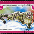 AFGHANISTAN - CIRCA 1984 Snow leopard - Photo