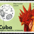 Royalty-Free Stock Photo: CUBA - CIRCA 1975 Rooster