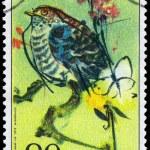 Постер, плакат: CZECHOSLOVAKIA CIRCA 1972 Cuckoo