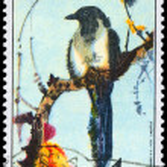 CZECHOSLOVAKIA - CIRCA 1972 Magpie — Stock Photo