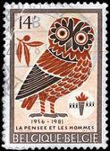 BELGIUM - CIRCA 1981 Owl — Stock Photo