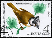 USSR - CIRCA 1979 Crested Tit — Stock Photo