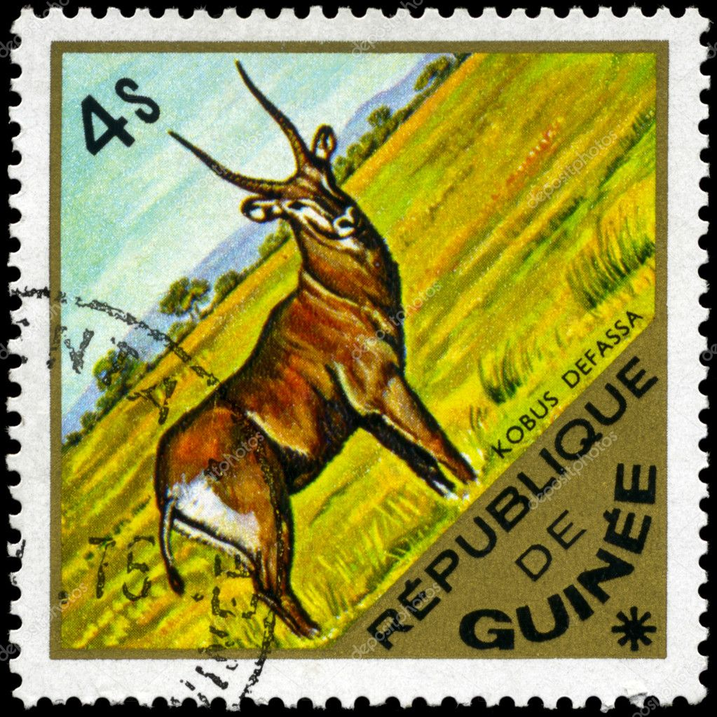 GUINEA - CIRCA 1975: A Stamp shows image of a Waterbuck with the inscription kobus defassa, series, circa 1975 — Stock Photo #6230870