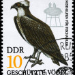GDR - CIRCA 1982 Fish Hawk - Foto Stock