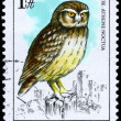 Stock Photo: HUNGARY - CIRC1984 Little Owl