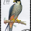 POLAND - CIRCA 1974 Falcon - Stock Photo