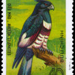 Royalty-Free Stock Photo: VIETNAM - CIRCA 1982 Black Baza