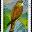 VIETNAM - CIRC1982 Kestrel — Stock Photo #6257986