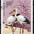 Royalty-Free Stock Photo: VIETNAM - CIRCA 1983 Asian Openbill