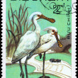 Royalty-Free Stock Photo: VIETNAM - CIRCA 1983 Spoonbill
