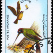 AFGHANISTAN - CIRCA 1985 Plover, Hummingbird - Stock Photo