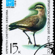 USSR - CIRCA 1982 Lapwing - Stock Photo