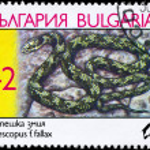 Постер, плакат: BULGARIA CIRCA 1989 Cat Snake