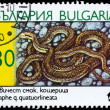 Постер, плакат: BULGARIA CIRCA 1989 Four lined Snake
