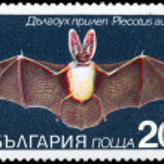 Постер, плакат: BULGARIA CIRCA 1983 Bat