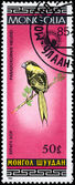 MONGOLIA - CIRCA 1985 Parrotbill — Stock Photo