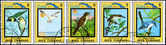 Kuba - ok. 1983 ptaki kubański — Zdjęcie stockowe