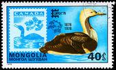 MONGOLIA - CIRCA 1978 Loon — Стоковое фото