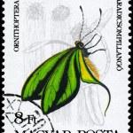 Постер, плакат: HUNGARY CIRCA 1984 Ornithoptera