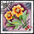 MONGOLIA - CIRCA 1983 Tagetes - Stock Photo