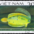 VIETNAM - CIRCA 1982 Crested Flounder — Stock Photo