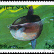 Royalty-Free Stock Photo: VIETNAM - CIRCA 1984 Sunfish
